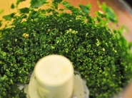 20110313-142091-basil-pesto-step-1