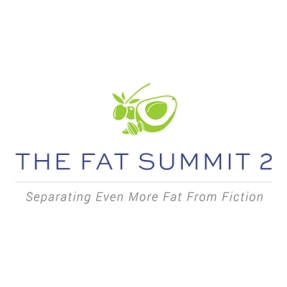 the-fat-summit-2-logo.jpg